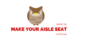 How To Make Your Aisle Seat a PLUS Seat