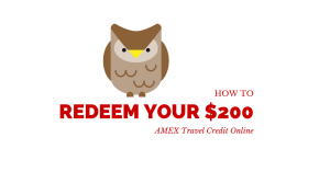 How to Redeem Your $200 AMEX Travel Credit Online